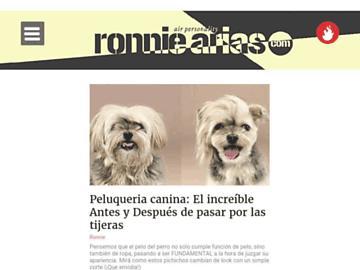 changeagain ronniearias.com