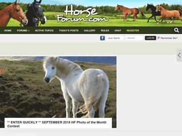 changeagain horseforum.com